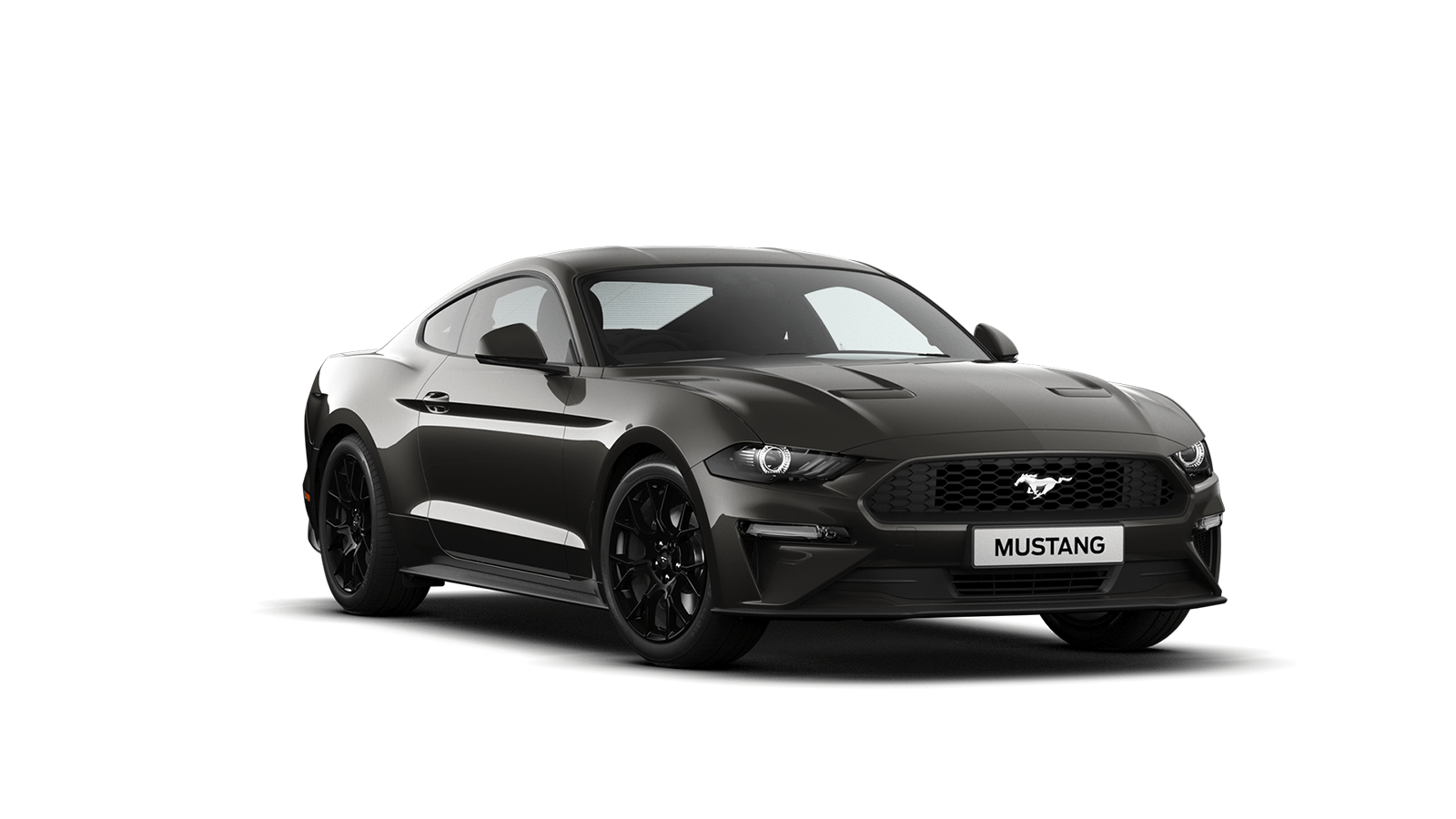 NEW MUSTANG 2.3 EcoBoost Fastback in Magnetic
