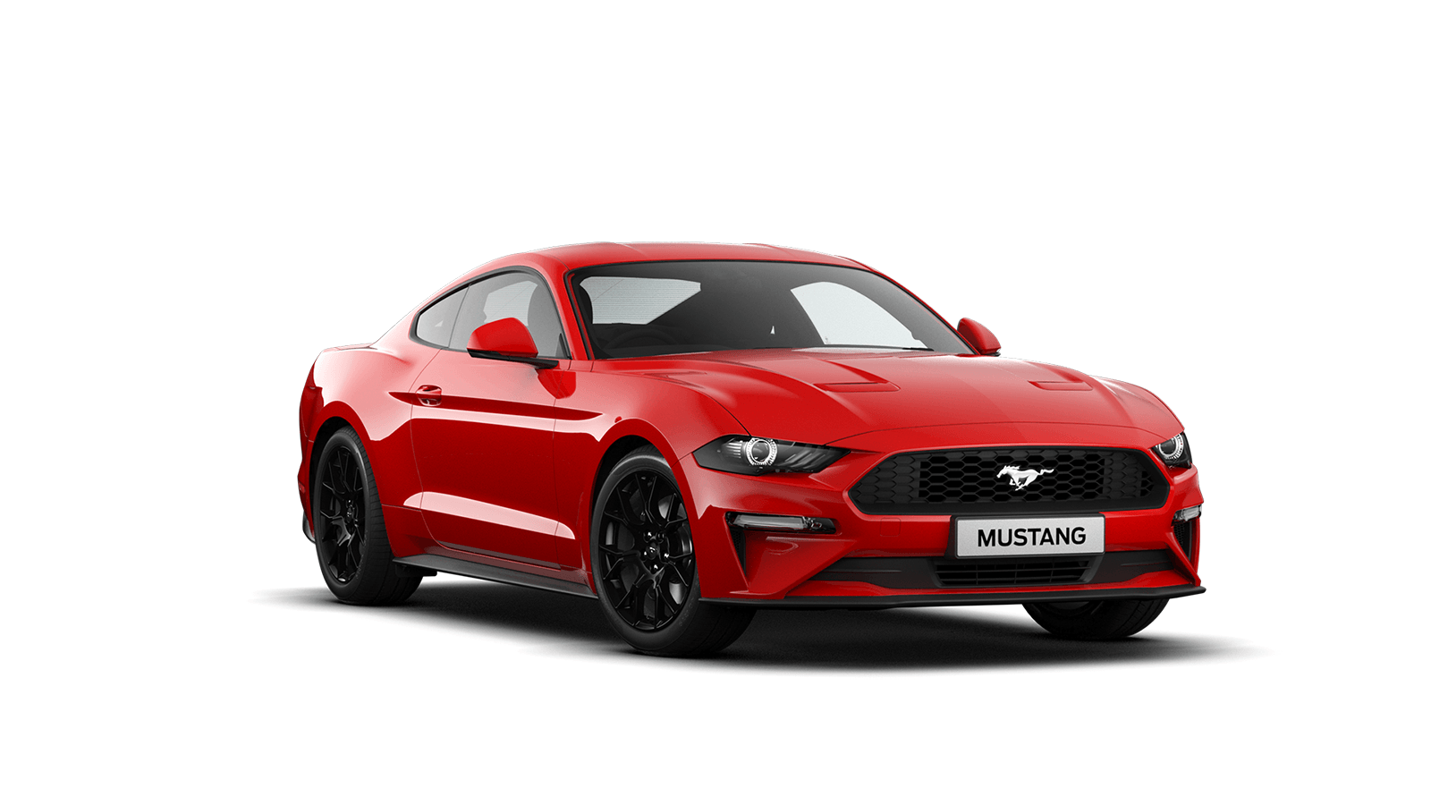 Ford NEW MUSTANG